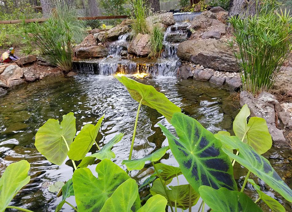 Kingwood Landscaping Portfolio & Landscape Pictures on Warrens Outdoor Living id=13265